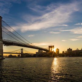 Brooklyn Bridge by Lorena Cora - Buildings & Architecture Bridges & Suspended Structures ( brooklyn bridge, sunrise, new york, brooklyn )