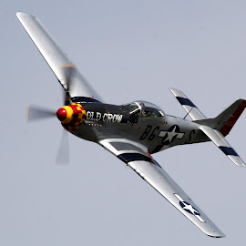 P51 Mustang Old Crow by Bruce Arnold - Transportation Airplanes