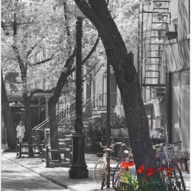 Manhattan at Springtime by Denny Paul - Digital Art Places ( black and white, color, manhattan, selectivecolourcolourpoppingcontest, springtime )
