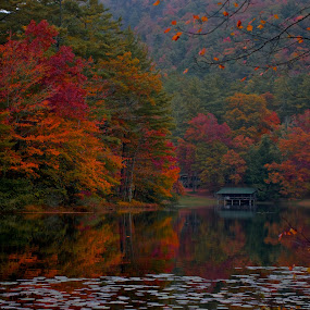 Western North Carolina Fall Colors #36 by Chris Wilson - Landscapes Mountains & Hills ( water, blue ridge mountains, western north carolina, fall ccolors, mountains, trees leafs, north carolinas, lake, landscape, smoky mountains, united states )