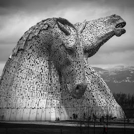 Kelpies by Karen Shivas - Buildings & Architecture Statues & Monuments
