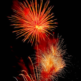 A Firey Explosion by Brenda Hooper - Abstract Fire & Fireworks ( 4th of july, abstrect, fire works, independence day, fire,  )