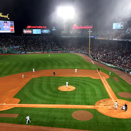 Fenway by Donna Silva - Sports & Fitness Baseball