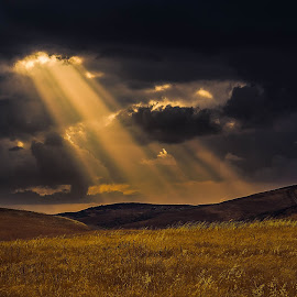 The Opening  by Apollo Reyes - Landscapes Prairies, Meadows & Fields ( clouds, dawn, sky, grass, dusk, fields,  )