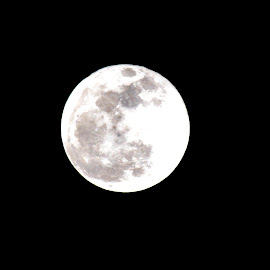 Full Moon by Emil Gunnary - Landscapes Weather ( dikon d-3200, full moon, nikon, photography )
