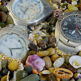 Water Watches by Jim Downey - Artistic Objects Technology Objects ( time keepers, waterproof, sea shells, wrist, coral sand, strapless )