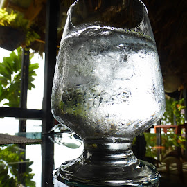 Cheers by Michele Williams - Food & Drink Alcohol & Drinks ( water, drink, glass, table, restaurant )