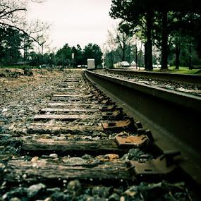 by Dan Miller - Transportation Trains