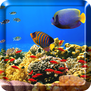 Download ocean fish live wallpaper free apk on pc for Fish live game