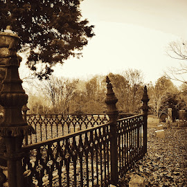 Civil War Cemetery  by Jimmy Durham - Novices Only Objects & Still Life ( history, fence, fall, cemetery, civil war, shadows, iron )