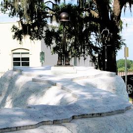 Savannah Vietnam Memorial by Debbie Salvesen - City,  Street & Park  Historic Districts ( history, sacrifice, monuments, 1970's, soldiers, violence, vietnam war, 1960's, anger, memorials, war, military )
