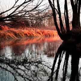 Mirror by Kasia Doroszkiewicz - Landscapes Waterscapes ( #water #river #red #blue #landscape )