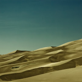 Waves of Sand by Sarah Chambers - Landscapes Deserts