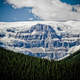 Canadian Glacier by Keith Johnston - Landscapes Mountains & Hills ( clouds, glacier, sky, mountain, canada, ice, snow, trees, forest )