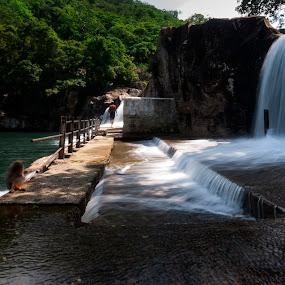 Manimuthar Water Falls by Muthu Kumar - Landscapes Travel ( manimuthar, ambai, yesmk photography, tirunelveli, nellai, ambasamudram, muthukumar, water falls, tourism, travel, south india, wide angle, india, picnic, tamilnadu )