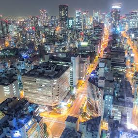 Go North by Ryusuke Komori - City,  Street & Park  Skylines ( building, skyline, japan, osaka, night )