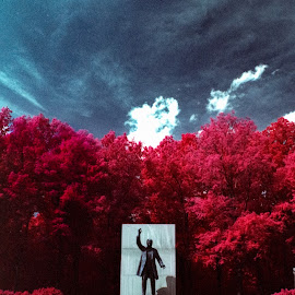 Roosevelt Island by Mark Schneider - City,  Street & Park  City Parks ( film, infrared, national parks, kodak, washington dc, abstract photography, landscapes, landscape )
