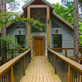 Walkway to Cabin  by Kathy Suttles - Buildings & Architecture Other Exteriors