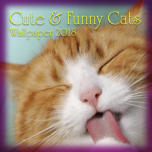 Download free Funny & Cute Cats Wallpaper for PC on Windows and Mac