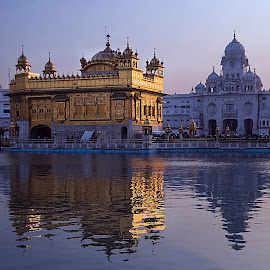 Golden Temple, Amritsar, INDIA. by Rakesh Syal - Buildings & Architecture Places of Worship (  )