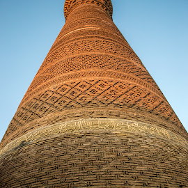 Kalyan minaret by Sergey Sibirtsev - Buildings & Architecture Places of Worship ( bukhara, madrassah, minaret, mosque, uzbekistan,  )
