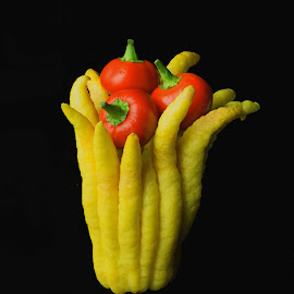 3 PEPPERS IN HAND by Jim Downey - Food & Drink Ingredients ( cherry peppers, peppers, black, buddha hand, lemon )