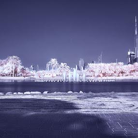 Dubai by Reggie Talledo - City,  Street & Park  City Parks