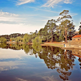 Lake Daylesford by Alan Evans - Wedding Bride & Groom ( aj photography, kevin )