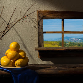 Still Life Number 11 by Richard Saxon - Artistic Objects Still Life ( blue and green, lemons, blue, green, still life, yellow, landscape, shadows )