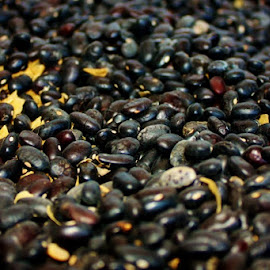 Coffee Beans by Karen Coston - Food & Drink Alcohol & Drinks ( up close, coffee beans, beans, coffee, guatemala )