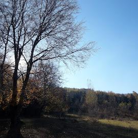 Есен by Georgi Kolev - Novices Only Landscapes ( небе., слънце., есен., природа., време. )