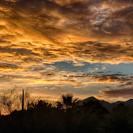 Sunrise over Tucson by Charlie Alolkoy - Landscapes Sunsets & Sunrises ( arizona, tucson, sunrise )