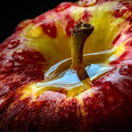 The source of Hope by Dragan Milovanovic - Food & Drink Fruits & Vegetables