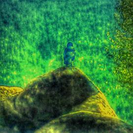Bird's Eye View by Jennifer De Guglielmo Hayes - Nature Up Close Rock & Stone
