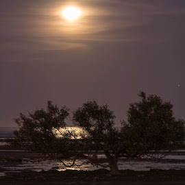 Full moon at low tide over the gulf by Clarissa Human - Landscapes Travel ( moon, nighttime, reflections, low tide, full moon, night,  )