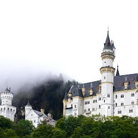 by Elena Stanescu-Bellu - Buildings & Architecture Public & Historical ( building, towers, castle, architecture, neuschwanstein )