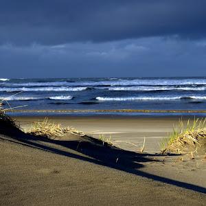551 Sunlight on sand.jpg
