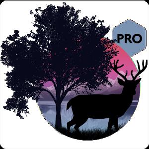 Amazing Land Pro For PC