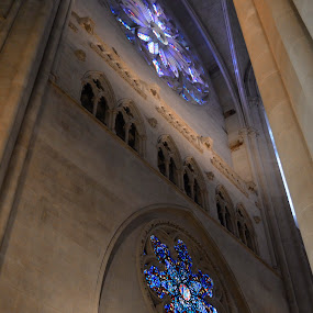 St. Patrick's Cathedral - NYC by Megan Donovan - Buildings & Architecture Places of Worship ( cest moi artful imaging, interior, st. patrick's cathedral, stained glass windows, church, megan donovan, new york city, nyc, worship )