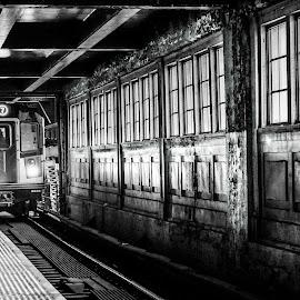 The Arrival by Rajon Al Masud - Transportation Railway Tracks ( subway, train, cityscape, tracks, new york city,  )
