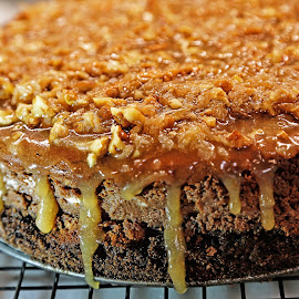German Chocolate Cheesecake by ANN CASON - Food & Drink Candy & Dessert ( cake, chocolate, food, nuts, caramel, dessert )