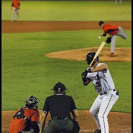 The Boys of Summer by Elk Baiter - Sports & Fitness Baseball ( baseball, keys, frederick, sports, nationals, batter, potomac, pinch hitter )