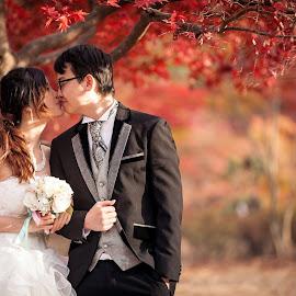 Korea Seoul - Namiseom Island - Pre-Wedding by Lim Wei De - Wedding Bride & Groom
