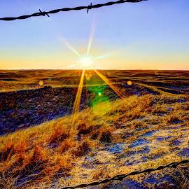 Great American Desert by Derrill Grabenstein - Landscapes Prairies, Meadows & Fields