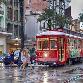 Canal Street, Nola by Tiffany Matt - City,  Street & Park  Street Scenes