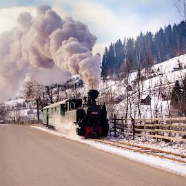 by Bratu Monica - Transportation Trains