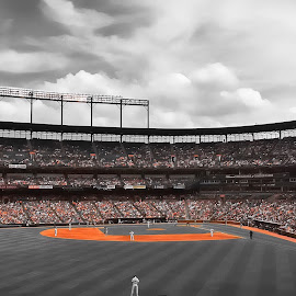 Camden Yards by Chris Montcalmo - Sports & Fitness Baseball ( oriole park, baltimore, baltimore orioles, orioles )