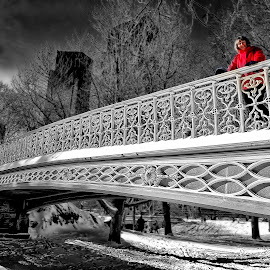 Girl in Central Park by Graham Peel - City,  Street & Park  City Parks ( red, girl, winter, snow, manhattan, nyc, bridge, central park )