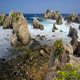 The Shark Teeth Beach by Agustinus Tri Mulyadi - Landscapes Beaches ( beach, landscape )