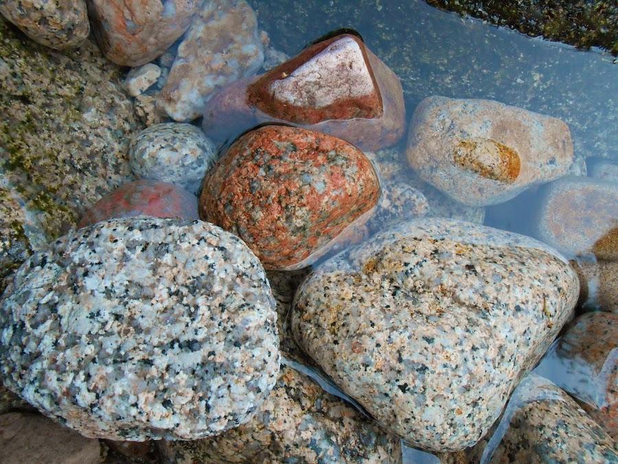 by Filipe Cardoso - Nature Up Close Rock & Stone